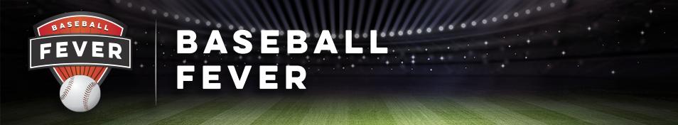 Baseball Fever Fundraiser Banner #Fundraising GreenBeeFundraising.com